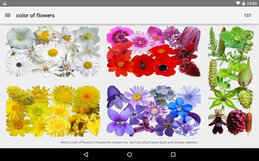 免費下載教育APP|What's that flower? app開箱文|APP開箱王