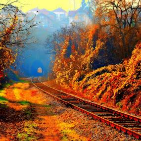 Behind  by Dalibor Davidovic - Digital Art Places ( color, autumn, digital art, yellow, digital photography, , #GARYFONGDRAMATICLIGHT, #WTFBOBDAVIS )