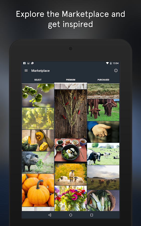 Snapwire - Sell Your Photos- screenshot
