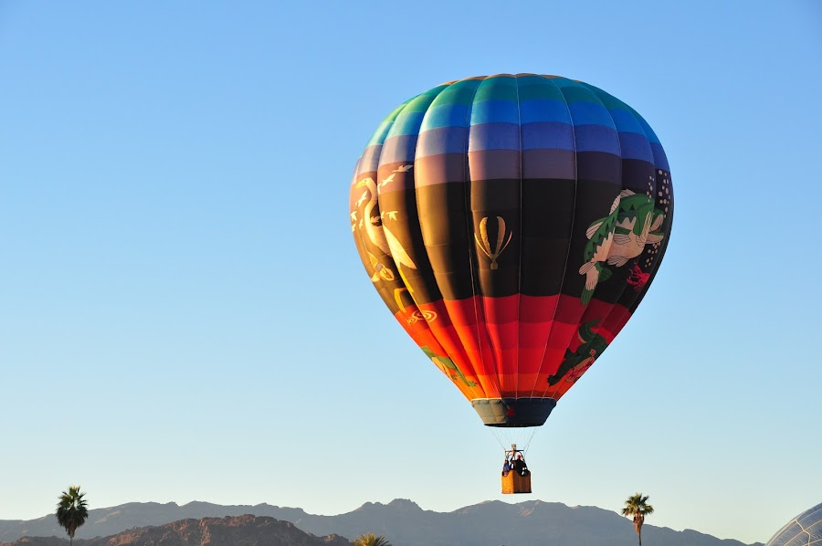 Up, Up and Away by Jane Singer - Transportation Other (  )