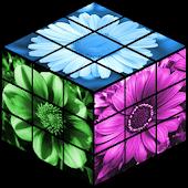 Flowers Rubik's Cube