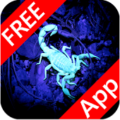 Scorpio LiveWallpaper HD