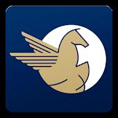 Pegasus Biz