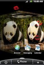 Panda Bear 3D