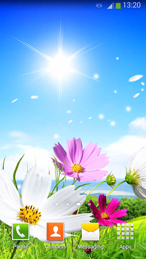 春天 動態壁紙