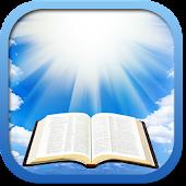 Swedish Holy Bible