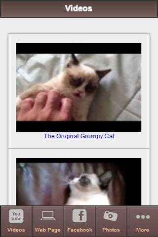 The Grumpy Cat Free Fan App - screenshot