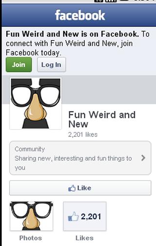 Fun Weird and New