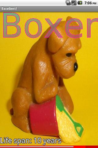 Model Puppy Dog Breeds 1 FREE- screenshot
