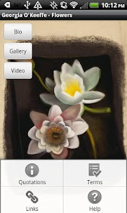 Georgia O'Keeffe - Flowers- screenshot thumbnail