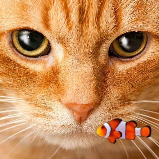 小丑鱼和小猫 动态壁纸12 個人化 App LOGO-硬是要APP