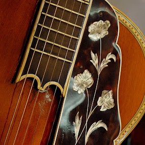 Flower and guitar ... by Joseph Muller - Artistic Objects Musical Instruments ( object, musical, instrument, , vertical lines, pwc )