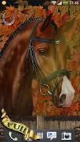Screenshot of Arabian Horse Free Wallpaper