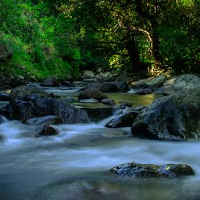 Semongkat by Erry Subhan - Landscapes Waterscapes ( water, sumbawa, west nusa tenggara, indonesia, rain forest, stone, rock, tourism, travel, semongkat, river )