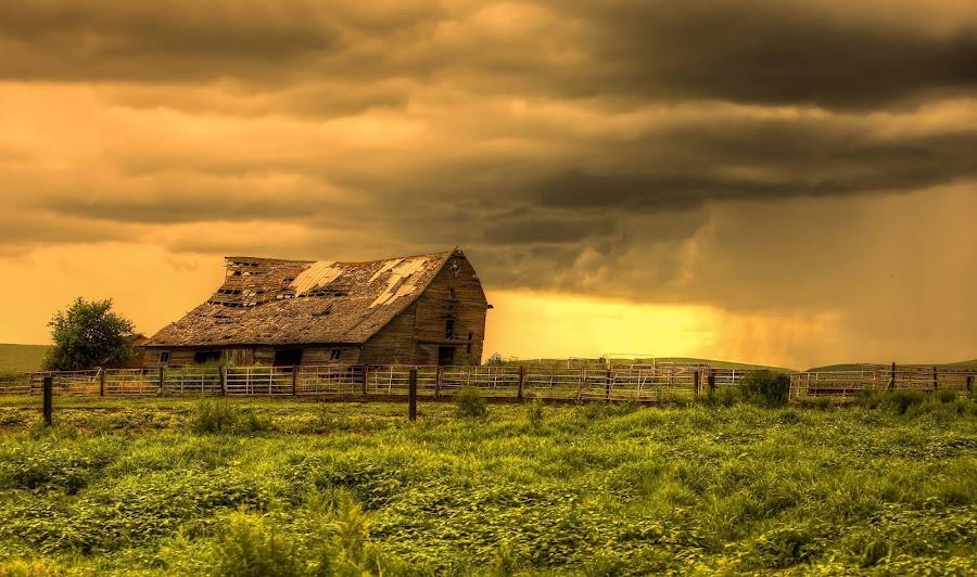 Age is Beauty by Joel Jones - Landscapes Prairies, Meadows & Fields ( barn, sunset, landscape, nebraska, rain )
