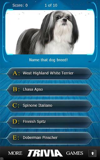 Name that Dog Breed Trivia