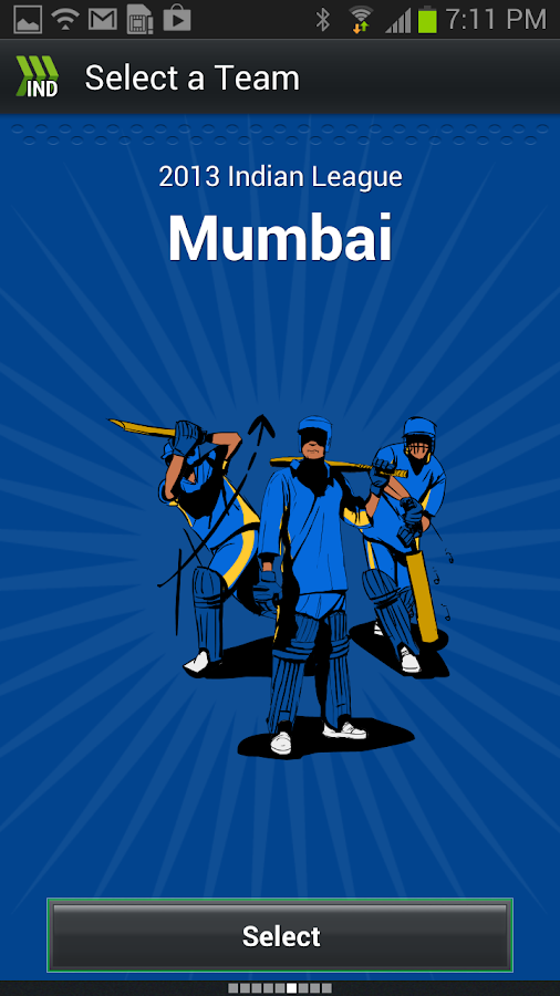 Hit Wicket Cricket India Cup - screenshot