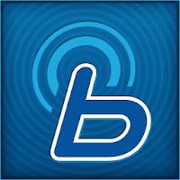 Hyundai Blue Link 2.16
