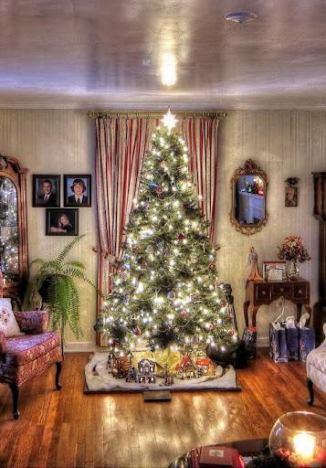 Christmas Fir wallpaper