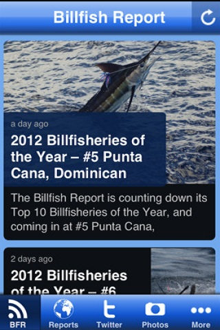 Billfish Report