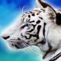 3D Wildlife Wallpaper logo
