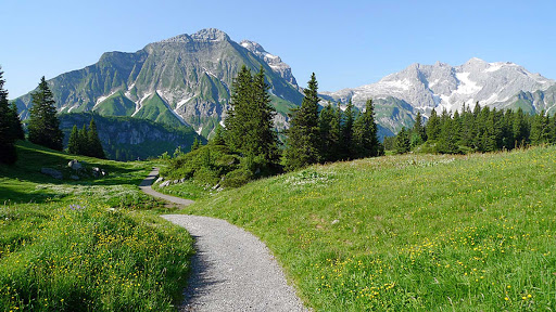 Korbersee-Lake-Austria - A trail leading to Korbersee Lake in Austria.