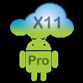 X11 Server Pro