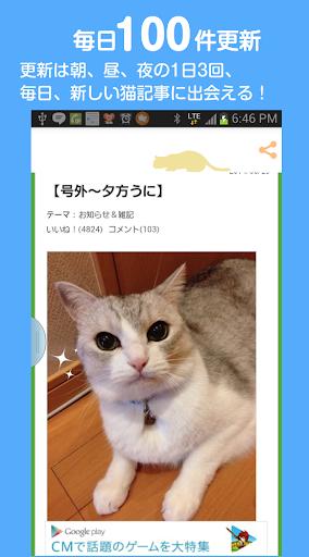 もっとねこ/猫好きのための猫まとめ|玩新聞App免費|玩APPs
