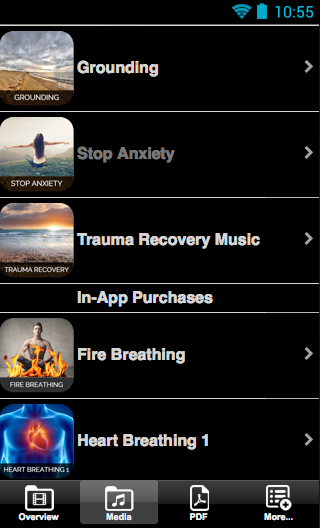 PTSD and Traumatic Stress- screenshot