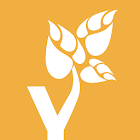 Yoga Tree icon