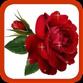 Gardening Rose
