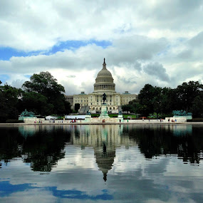 The Capitol by Jamie Tambor - Instagram & Mobile iPhone ( dc, washington, reflection, capital, pond,  )