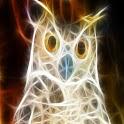3D Owl logo