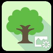App ASUS DayScene - Live wallpaper APK for Windows Phone
