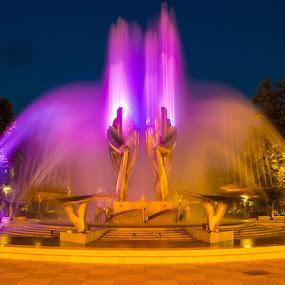 Color Fountain by Daniel MV - City,  Street & Park  Fountains ( lights, sky, tree, purple, blue, silver, fountain, dark,  )