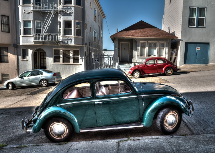 Beetles by Andrey Grinkevich - Transportation Automobiles ( car, old, hdr, pair, beetle,  )