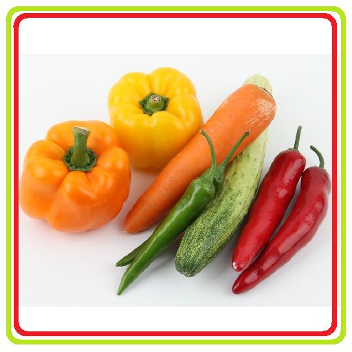 Garden Square Vegetables Guide LOGO-APP點子