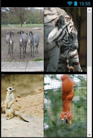 Zoo Fairy Tales