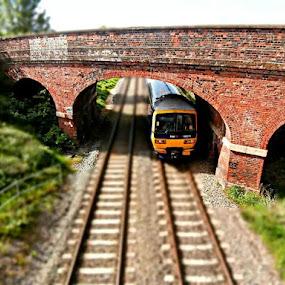 by Karen Buttery - Transportation Trains