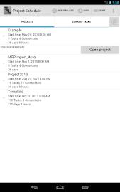 Project Schedule Screenshot 11
