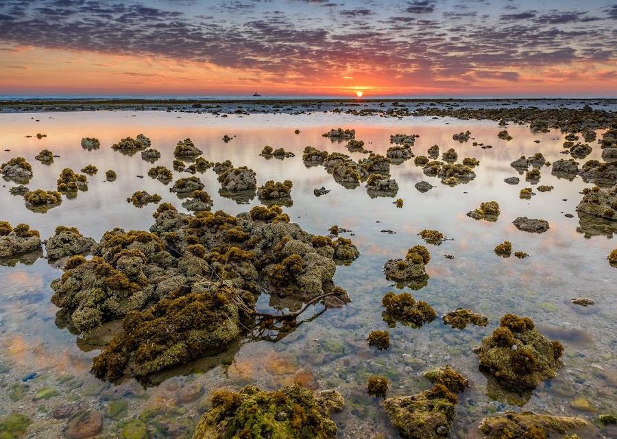 Sunrise by Bakir Ali - Landscapes Sunsets & Sunrises ( clouds, water, colors, sunrise, rocks, sun )