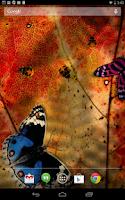 Screenshot of Friendly Bugs Live Wallpaper