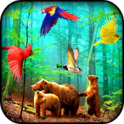Free Forest Birds Live Wallpaper APK for Windows 8
