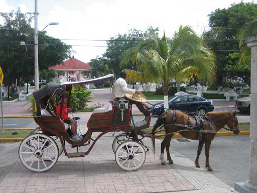 A carriage ride around Roatan.