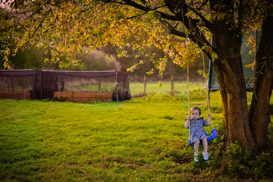 One more swing before bedtime by Steve Brookes - Babies & Children Child Portraits