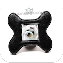 Photo Frames for Pets icon