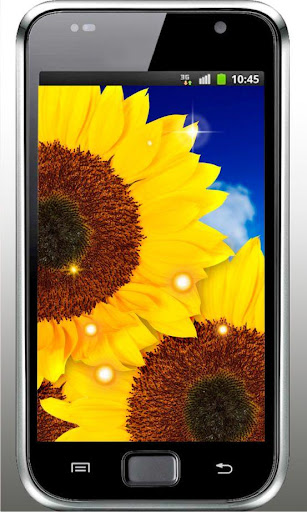 Sunflower Free live wallpaper