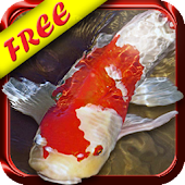 Koi Fish Live Wallpaper Free