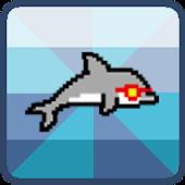 Dolphin Rush