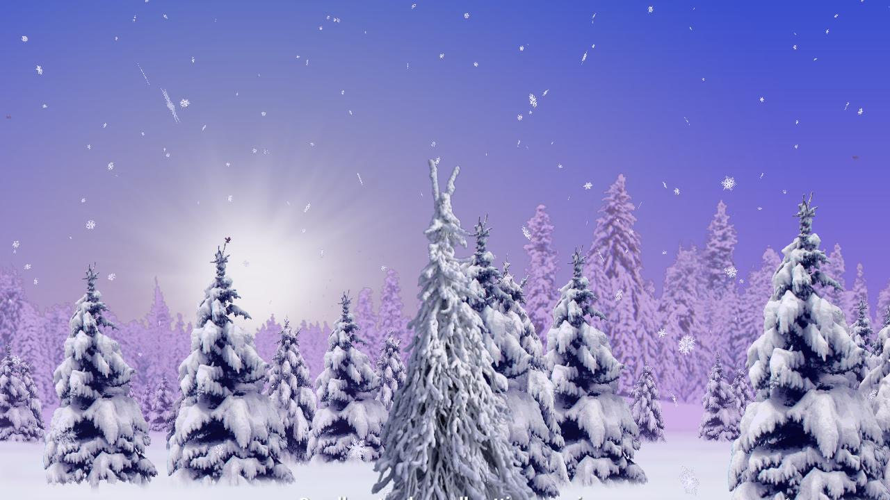 Christmas Lights Set To Music